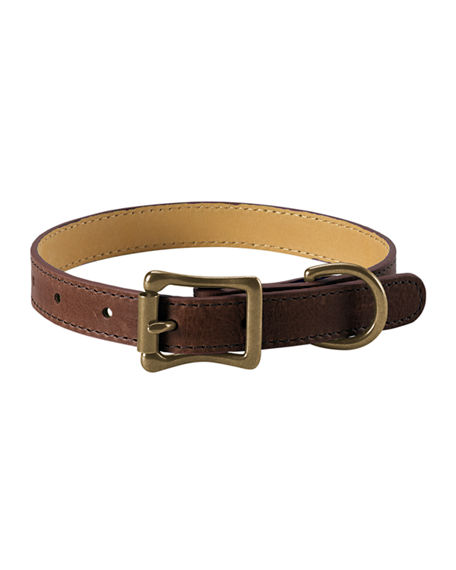 Graphic Image Personalized Small Dog Collar