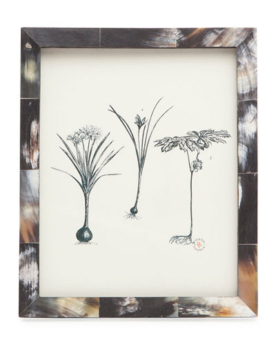 Pigeon and Poodle Essen Picture Frame, 8\
