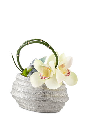 T&C Floral Company Petite Orchids in Wave Container