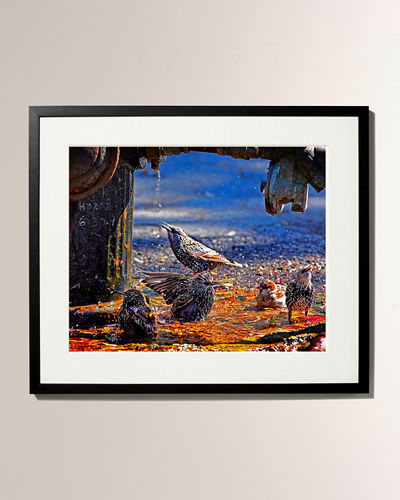 New York Times Bird Sanctuary Framed Photo Print - Medium