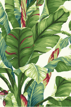 York Wallcoverings Banana Leaf Wallpaper Sample