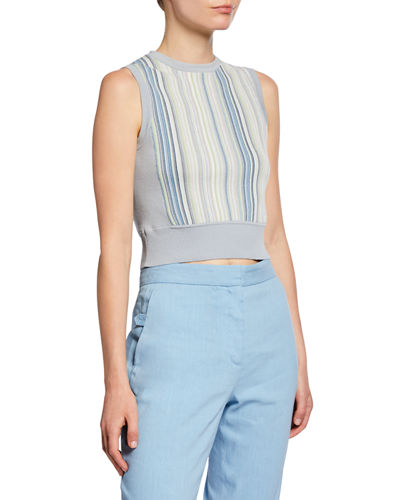 Lisse Striped Crop Tank Top