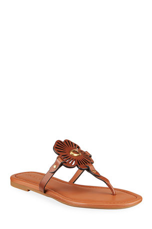 Coach Julia Floral C Logo Flat Thong Sandals